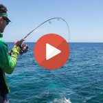 Shore fishing in Italy (daylight slow-motion video)